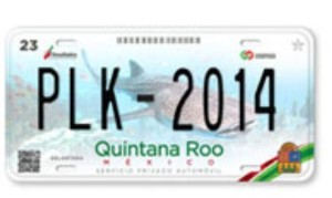 curp vehicle registration carplates cozumel playadelcarmen residentcard